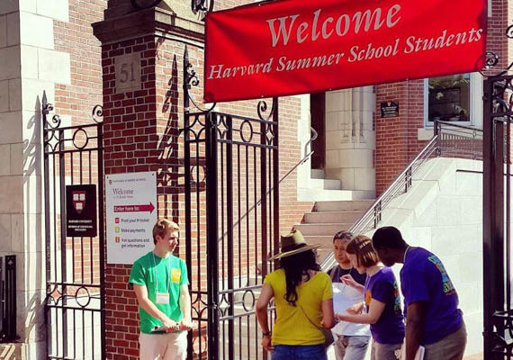 Harvard summer school