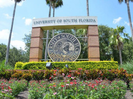 University of South Florida