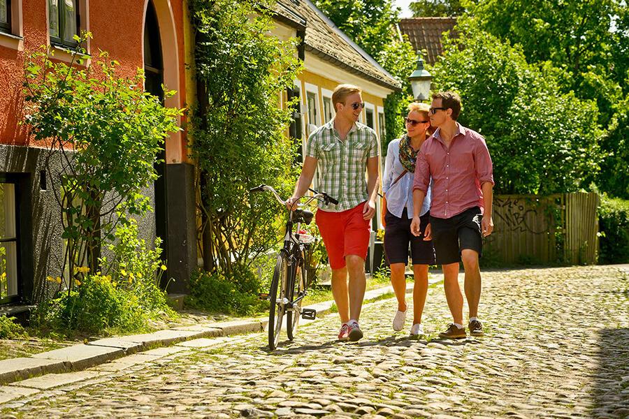 шведские студенты